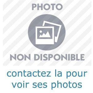 commence une relation officielle avec une fille bonne vivante sur Montpellier